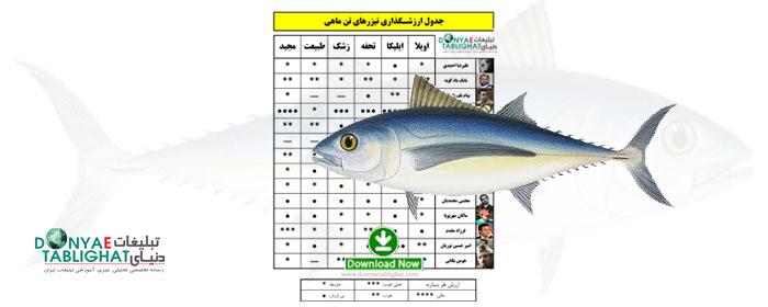 جدول ارزشگذاری تیزرهای تـُن ماهی / کپی، حتی از روی تیزر ایرانی! / نظر کارشناسان مثل همیشه جذاب!