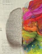 کمپین تبلیغاتی جذاب و مفهومی تفکر راست مغزی از مرسدس بنز!
