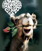 تبلیغات زیبا و احساسی باغ وحش به مناسبت روز ولنتاین…