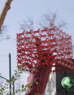 اقدام شهرداری تهران با درختان خشک در سال ۹۷